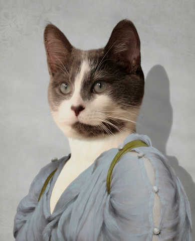 portrait-animal-4