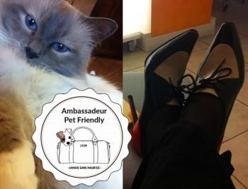 jamais-sans-maurice-voyage-pet-friendly