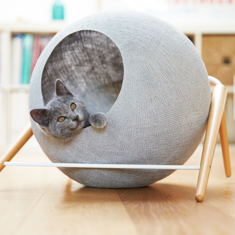 meyou-design-meuble-chat-2