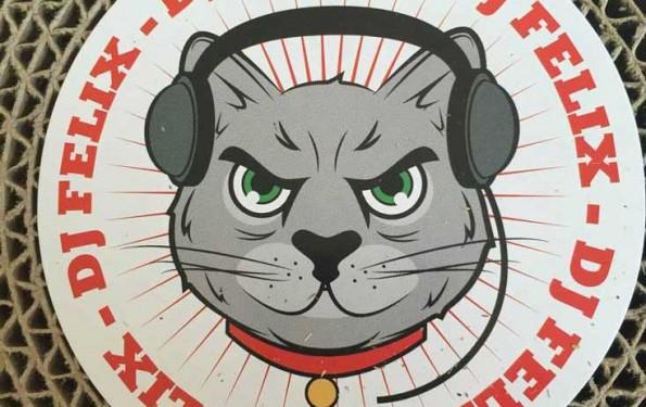 chat-griffoir-dj-wanimo-10