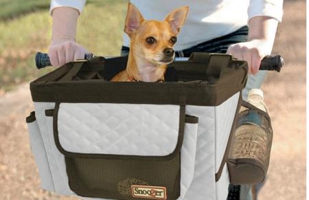 Les accessoires de l'été «so 2016» pour votre chien