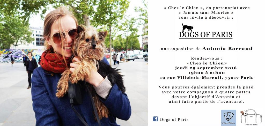 dogs-of-paris-chien
