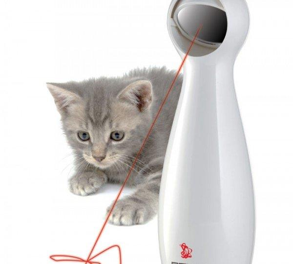 Laser_Frolicat_Bolt_With_Cat