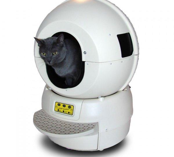 litière-chat-robot