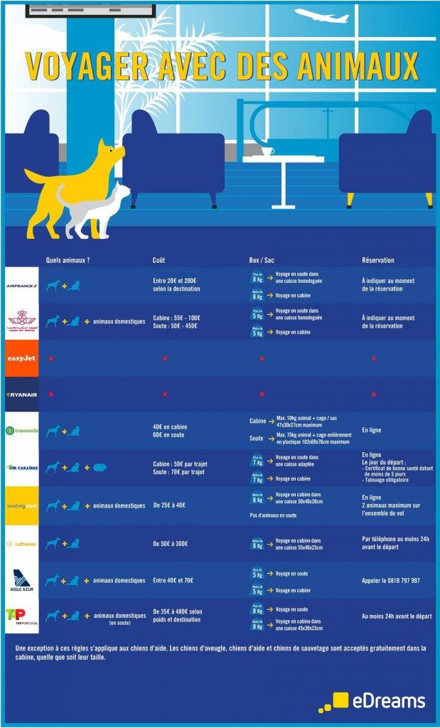infographie animaux compagnie aérienne