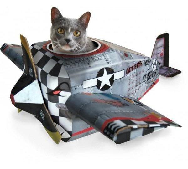 voyager-avec-un-chien-avion