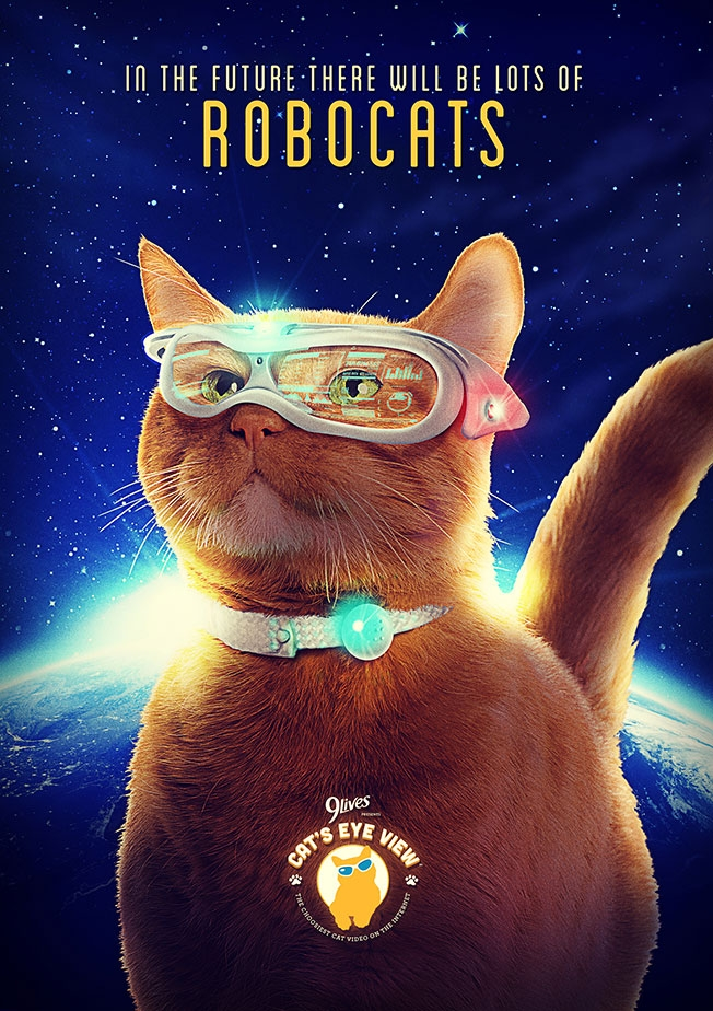 cats-eye-view-poster