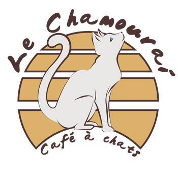 chamourai_lyon_café_chats_2
