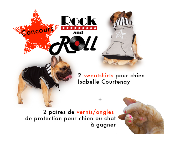 concours-isabelle-courtenay-chien-chat