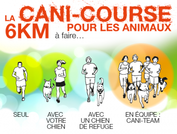 cani-course-spa
