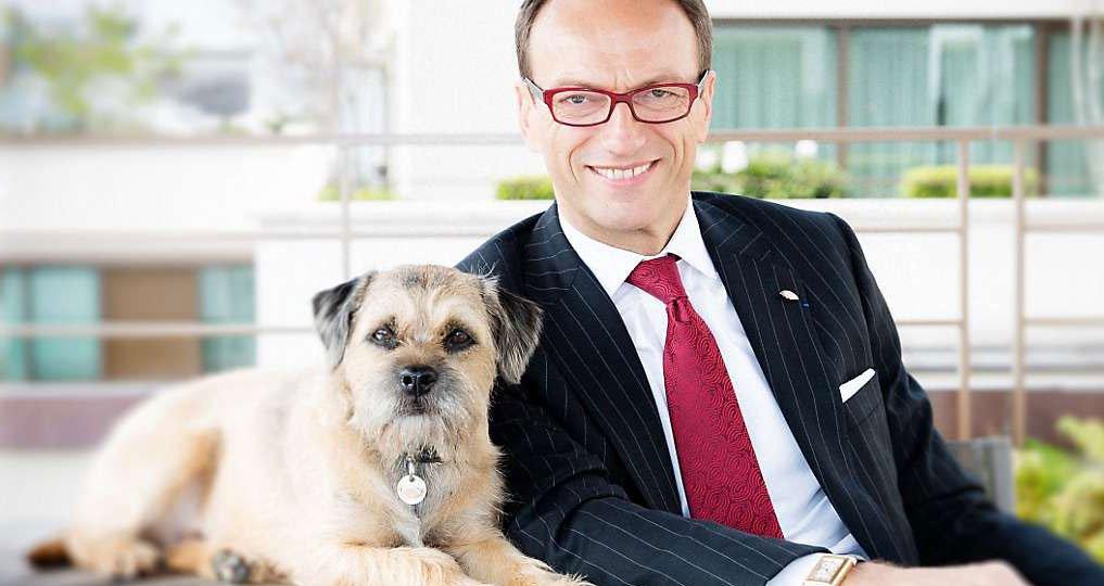 Partir archives jamais sans maurice for Hotels qui acceptent les chiens