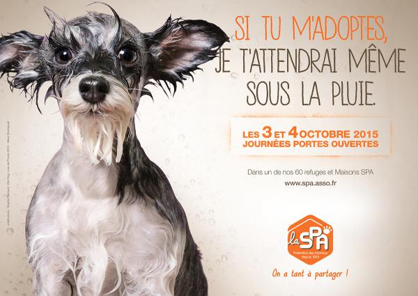 Spa Animaux Paris