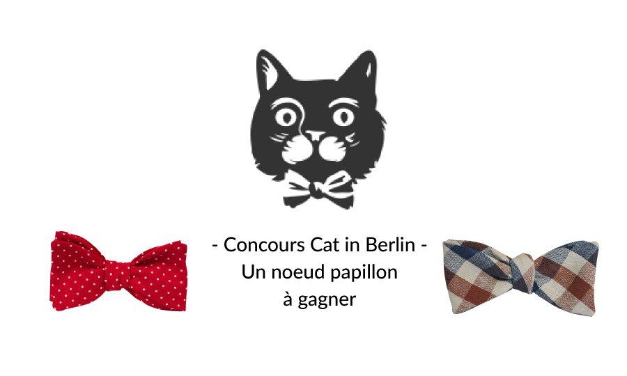 cat-in-berlin-chat