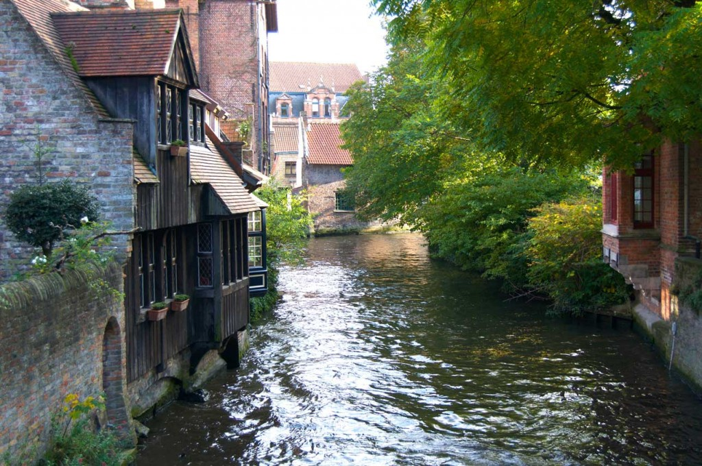 Bruges-chien-pet-friendly-belgique