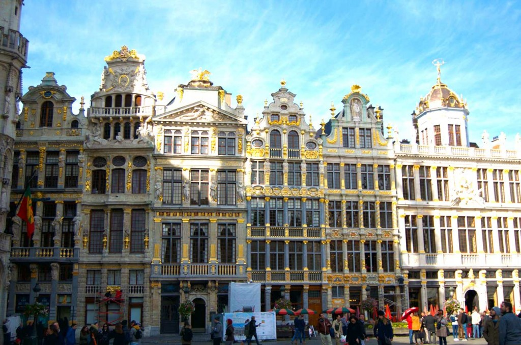 Bruxelles--chien-pet-friendly-belgique