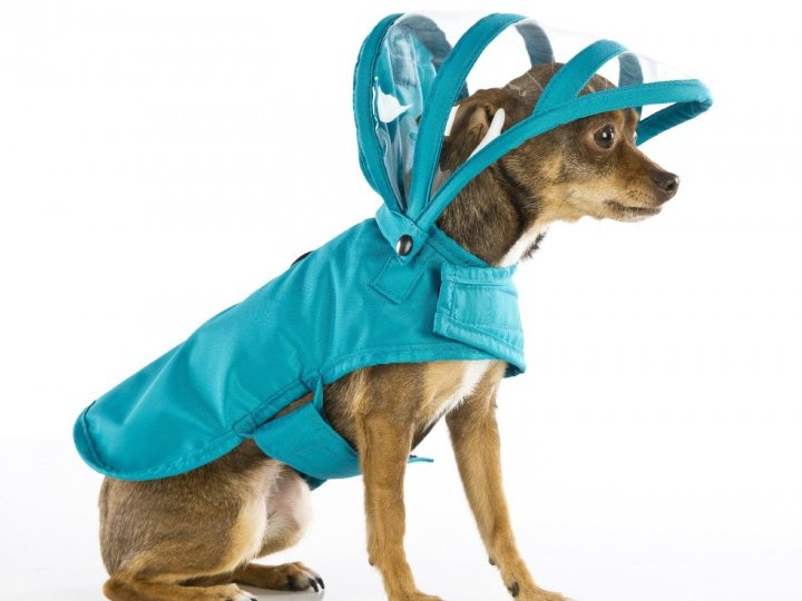 combinaison-pluie-chien
