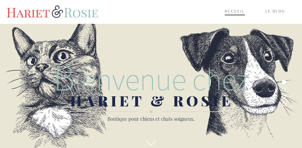 hariet-rosie-chat-chien-home
