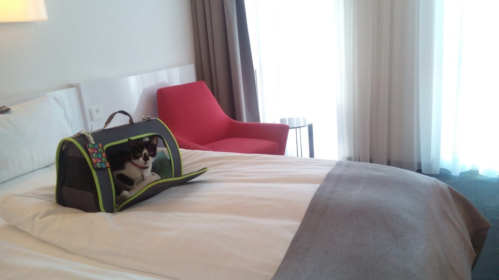 hotel-francfort-chien-petfriendly