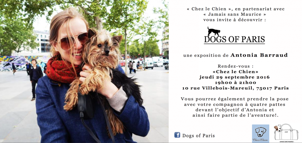dogs-of-paris-chien