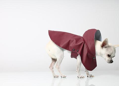 manteau-pour-chien-hariet-rosie-7