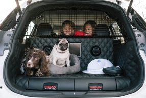 Une voiture 100% pet friendly : le Nissan X Trail 4 Dogs
