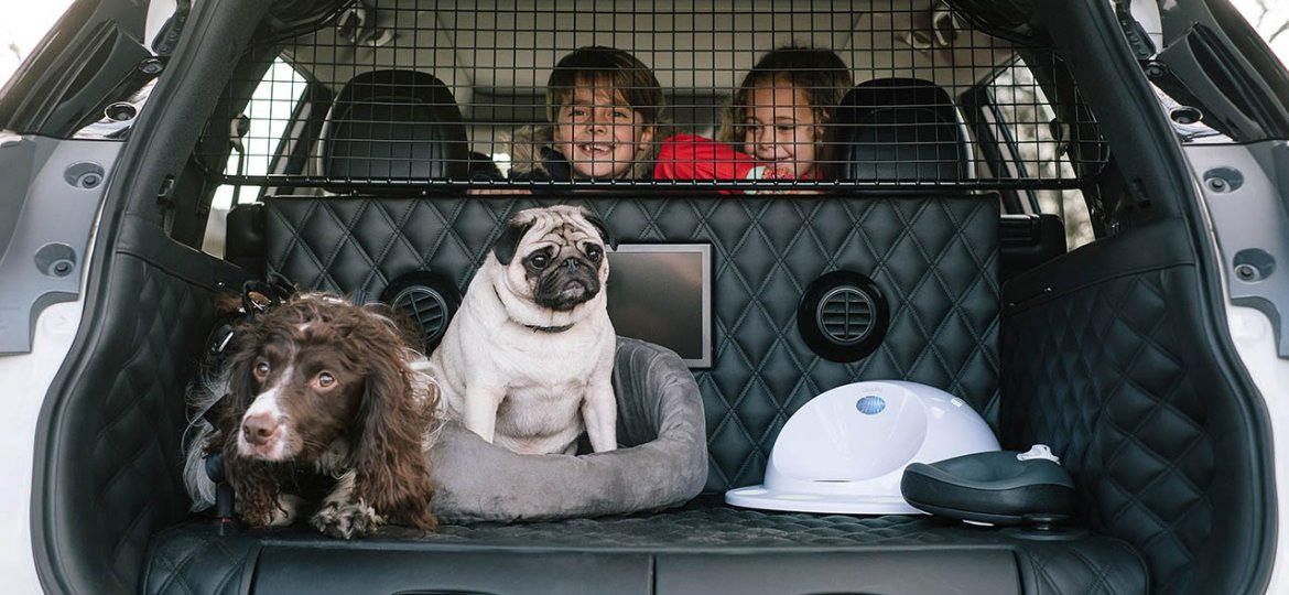 Voiture-pet-friendly-chien-Nissan