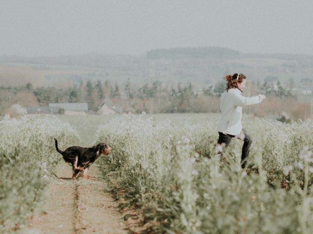 voyage-chien-pet-friendly