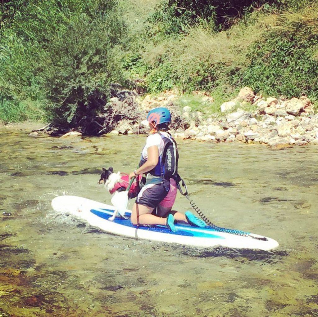 cani paddle chien destination dog friendly