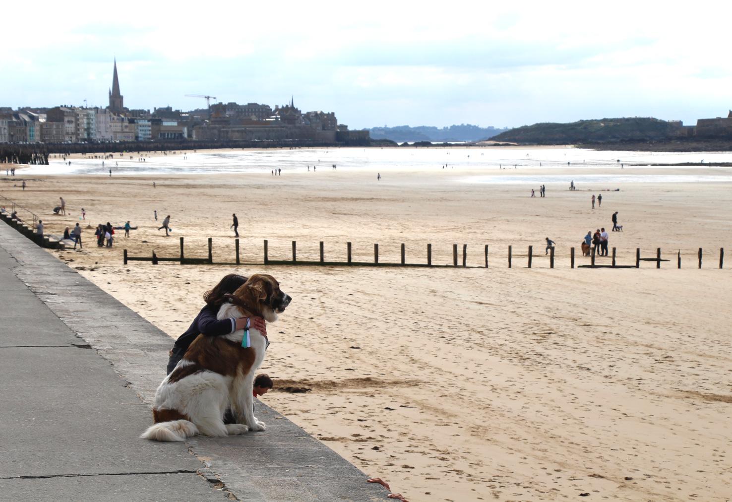 Week end saint malo avec son chien grand h tel for Hotels qui acceptent les chiens