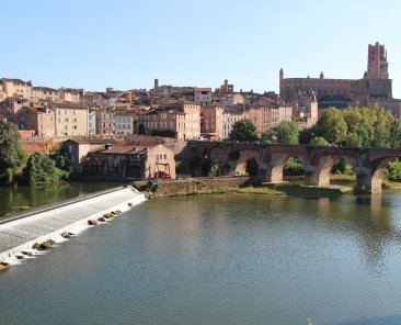 comfort hotel albi pet friendly week-end avec son chien dans le tarn