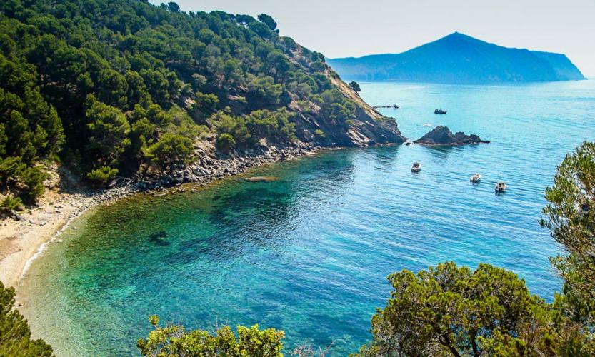 Partir en Espagne avec son chien -catalogne - trouver un hébergement ou une location de vacances qui accepte les chiens et les animaux