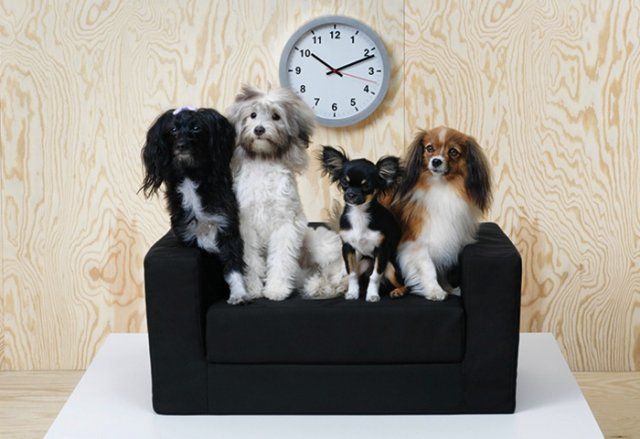 animalerie ikea decoration animaux chien chat animal mobilier