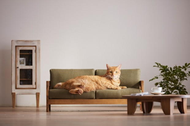 mobilier pour chat miniature et design par okawa kagu au. Black Bedroom Furniture Sets. Home Design Ideas