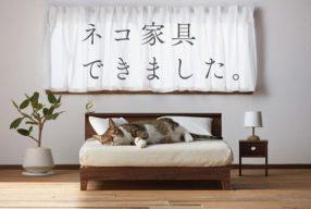 Du mobilier miniature pour chat par Okawa Kagu