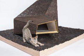 Des maisons pour chats imaginées par des architectes