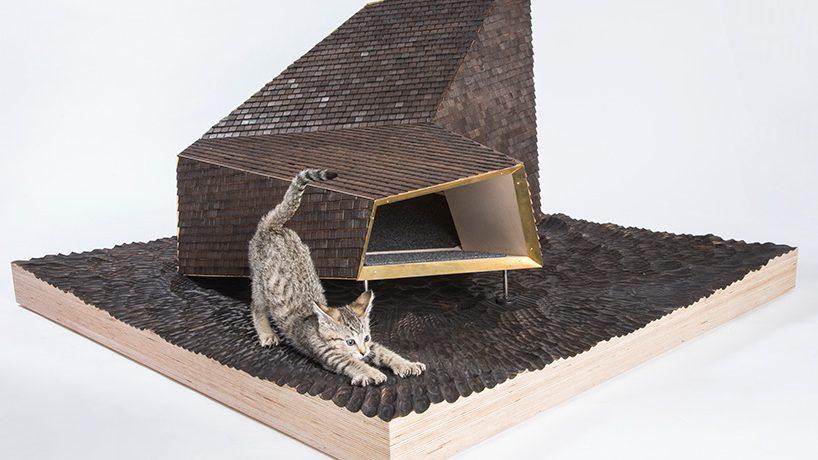 maisons pour chat