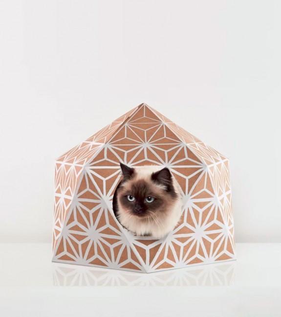 maison de jeu pour chat design