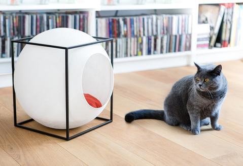 lit pour chat