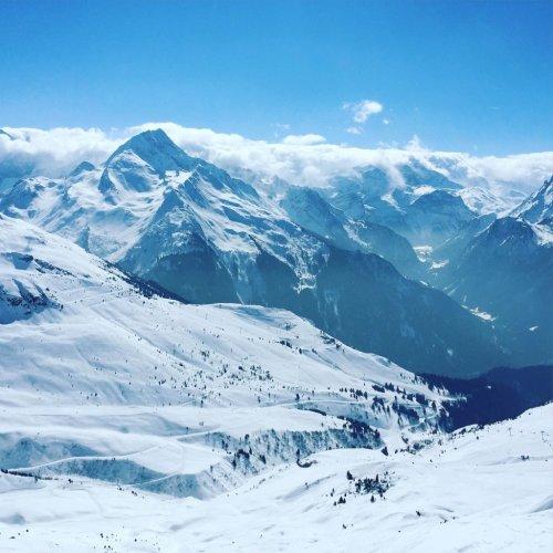 ski-avec-chien