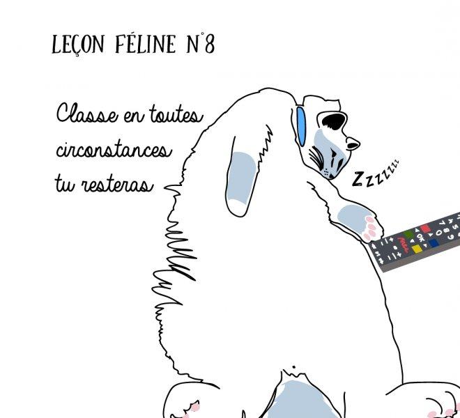 lecon féline 6 jamais sans maurice illustration chat graphiste graphisme