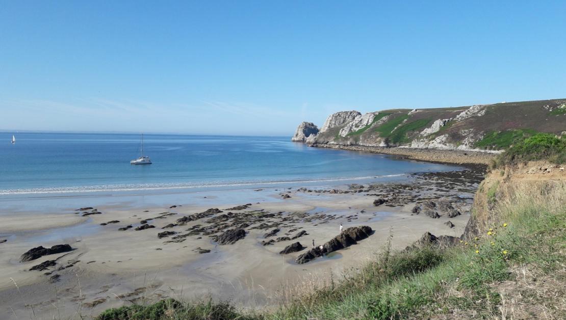 Vacances en Bretagne avec un chien Presqu'ile de Crozon jamais sans maurice