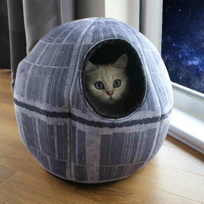 idée cadeau de noël chien chat bon plan